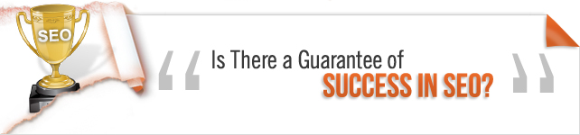 SEO Success Guarantee