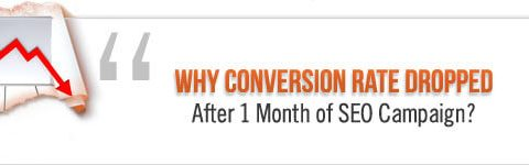 conversion rate dropped after 1 month of SEO